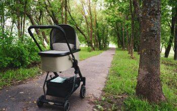 עגלה לתינוק שנולד - כיצד להשיג את הנוחות לתינוק שלנו.